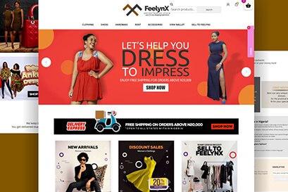 feelynX-abuja-web-design-backdesk